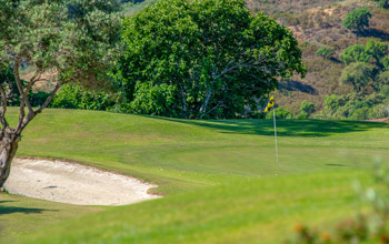 Par 3 Golf Course | La Cala Resort